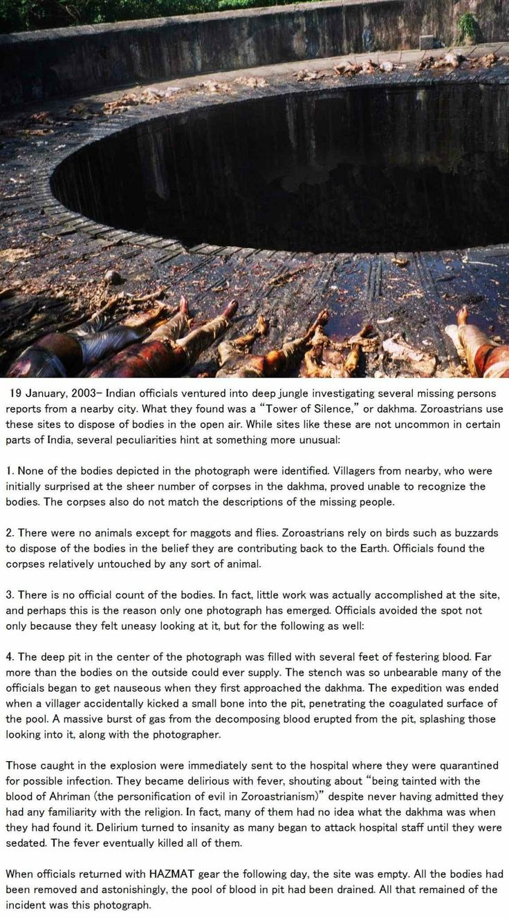 This is super creepy and it's even more creepy because it might be real which means that those dead bodies might be real which means that they are ACTUAL ROTTING BODIES excuse me while I go throw up