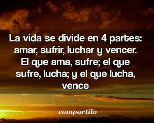 La vida se divide en cuatro partes: amar, sufrir, luchar y vencer. El que ama, sufre; el que sufre, lucha; y el que lucha, vence. #frases