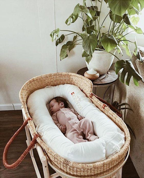 15+ wunderschöne Pflanzen zur Verwendung im Kinderzimmer Ihres Babys   – Mini chose