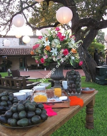 Avocado Bar – Gallagher Ranch | wedding | Pinterest | Avocado ...