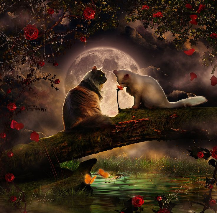 The magic of love by AngelesRR on DeviantArt