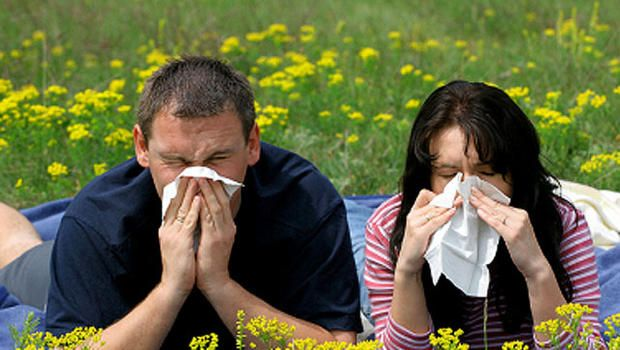 Experts: Seasonal allergies to be especially bad this fall