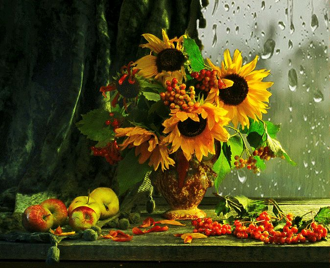 необыкновенный осенние цветы картинки гиф войти личный