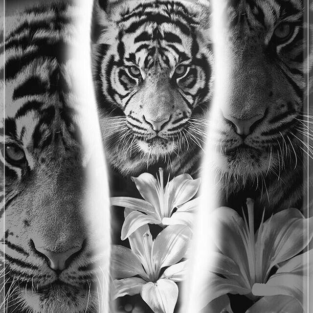Pin By Andrea Salas On Tatuajes Lillies Tattoo Tiger Tattoo Sleeve Tiger Tattoo