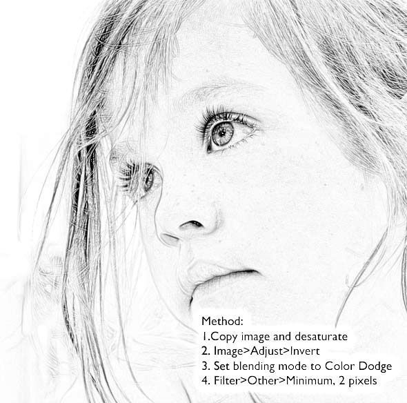 Best way to make line art from a photograph. by roxanne