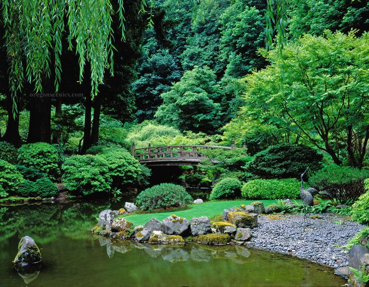622 best images about japanese gardens on pinterest japanese tea house small japanese garden - Japanese garden ...
