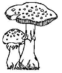 17 best ideas about Ausmalbilder Herbst on Pinterest   Malvorlagen ...