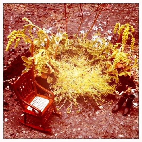Guerilla Gardening be Steve Wheen http://restreet.altervista.org/steve-wheen-ripara-le-buche-stradali-con-mini-giardini/