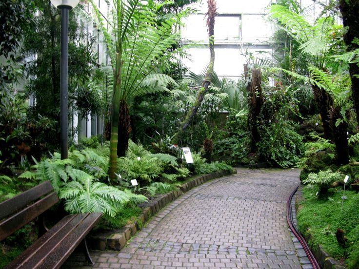 Jardines Tropicales Peque Os Dise O De Interiores