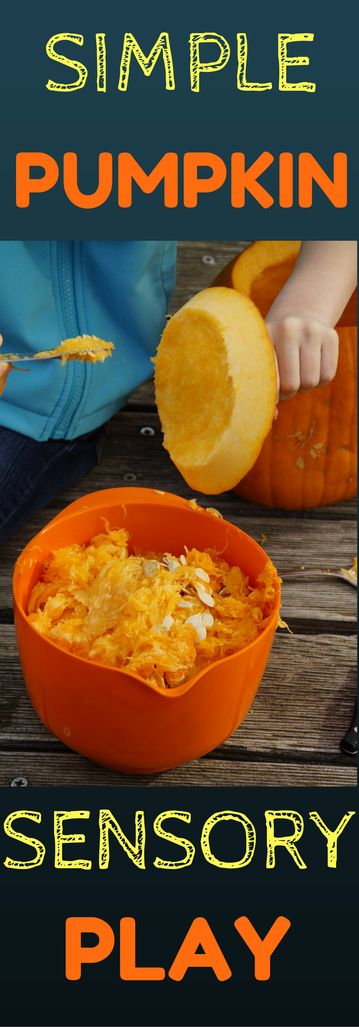 Fall toddler activities are something many look forward to every year. Sensory play for your toddler allows them to learn from the simple joys in their environment. Here are simple ways to encourage your toddler's development through sensory pumpkin play.
