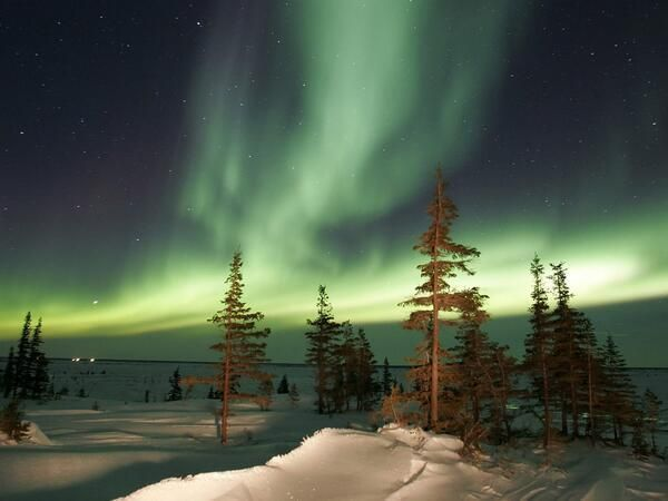 Winter night in #Canada Embedded image permalink