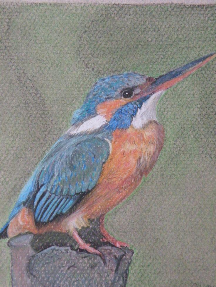 Ijsvogel 15x20 cm pastelpotlood