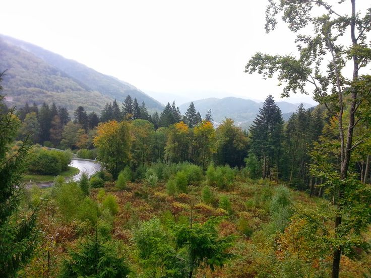 88 - Vosges Col de Bussang Octobre 2013