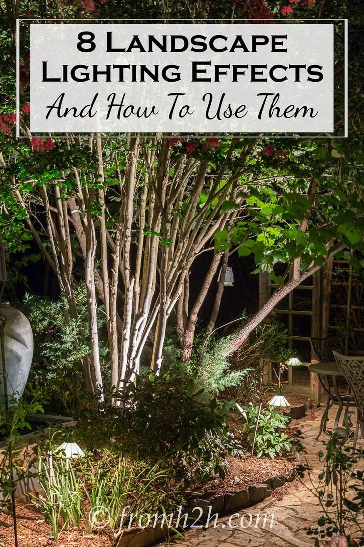8 Dramatic Landscape Lighting Effects And How To Use Them | Want to set up some dramatic lighting in your garden but not sure how? Get some ideas from this list of landscape lighting effects and how to use them.