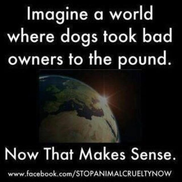 There are no bad dogs, just bad owners....