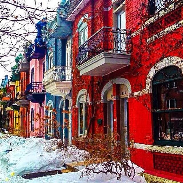Colourful Townhouses in Le Plateau, Montreal