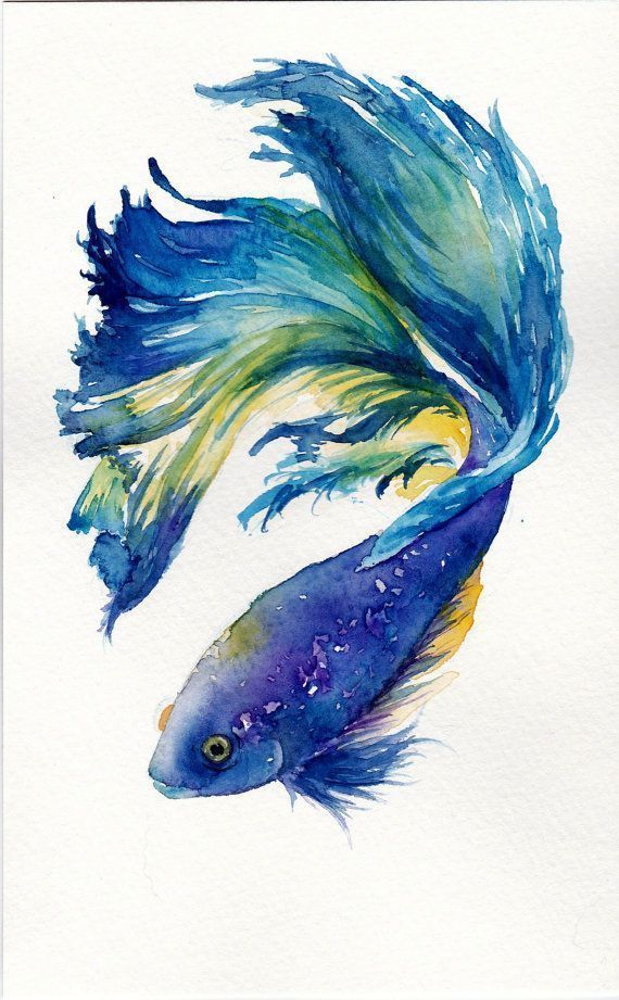 Details About Modern Abstract Beautiful Fish Art Watercolour
