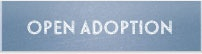 The Independent Adoption Center is the agency we are partnering with to make our dream of a family come true.