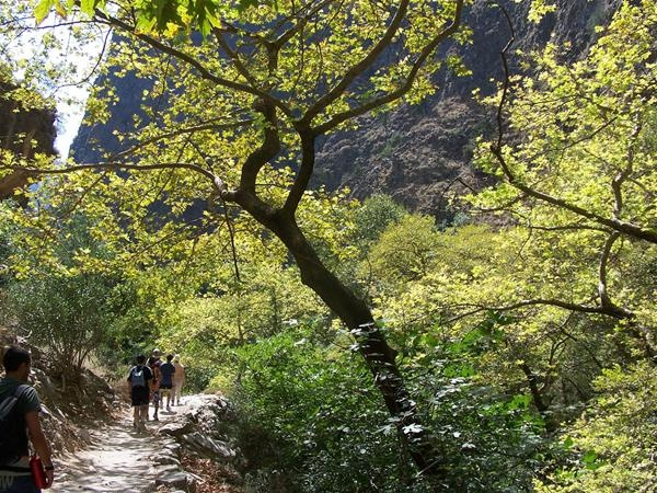Samaria Gorge in Crete    Small Group Tours   with Diktynna Travel