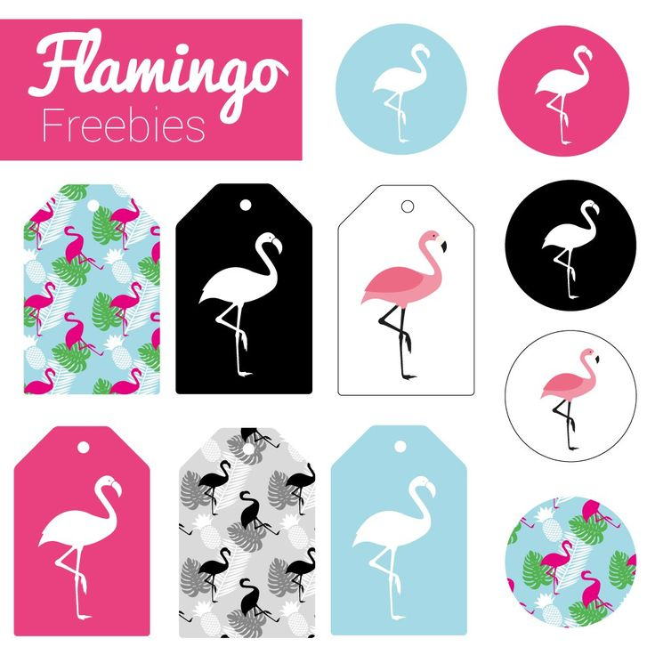 Geschenkanhänger selbst drucken #flamingo #freebie #printable #giftwrapping  www.miomodo.de