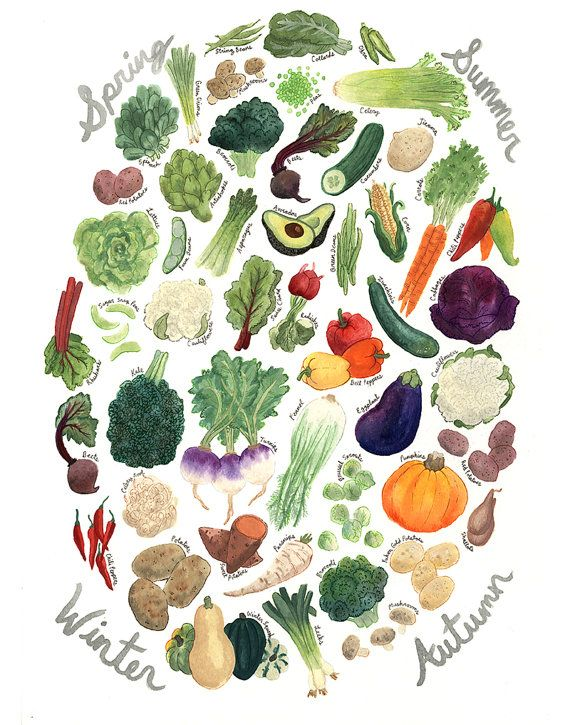 For the kitchen - Veggie Seasonality Print by CactusClub on Etsy