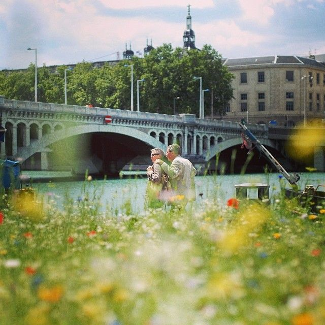 Les Berges du Rhône en fleurs