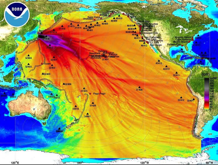 A map of the distrubuted waves from Japan's Tsunami 21 November 2016
