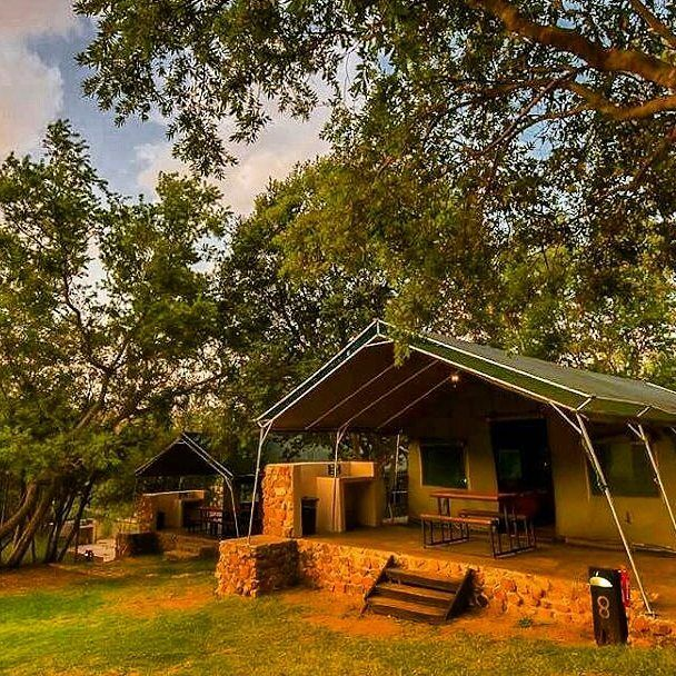 Summer...the perfect time for camping at #bushwillowtentedcamp  #camping #outdoor #thegreatoutdoors #livelife #weekendaway #friendsweekend #familytime #familyholiday #lekkerplaces #tentedcamp #tent #nature #relax #refresh #connect