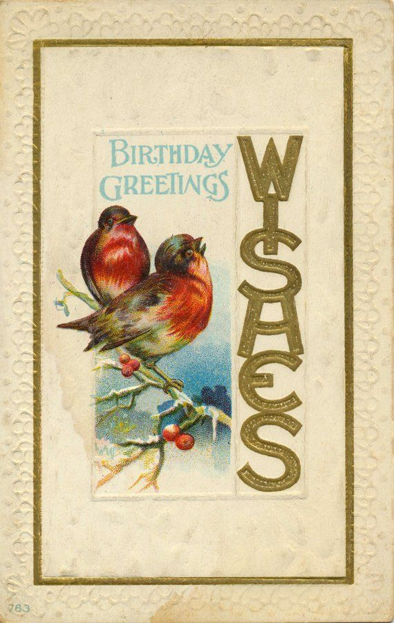 Antique Edwardian Era Birthday Greetings And Wishes Postcard With Winter Birds Framed In Gold Circa 1900