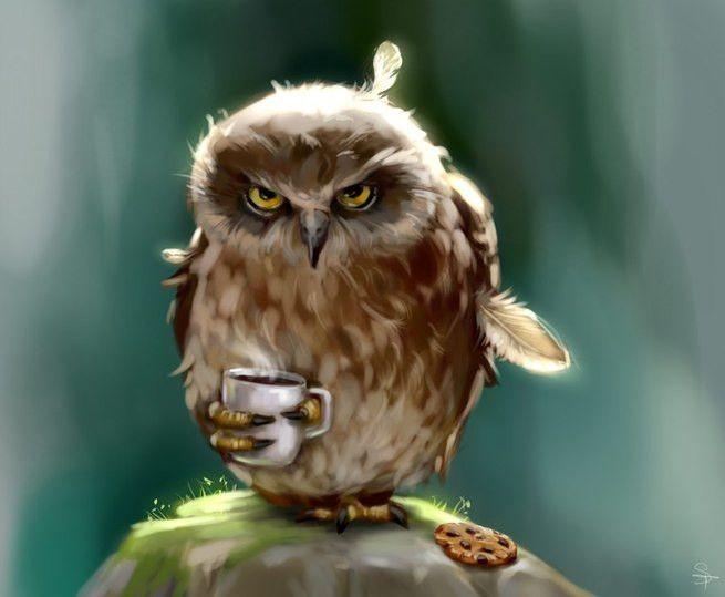 Картинка с недовольной совой с кружкой кофе #картинки#фото#животные#сова#кофе#настроение#утро