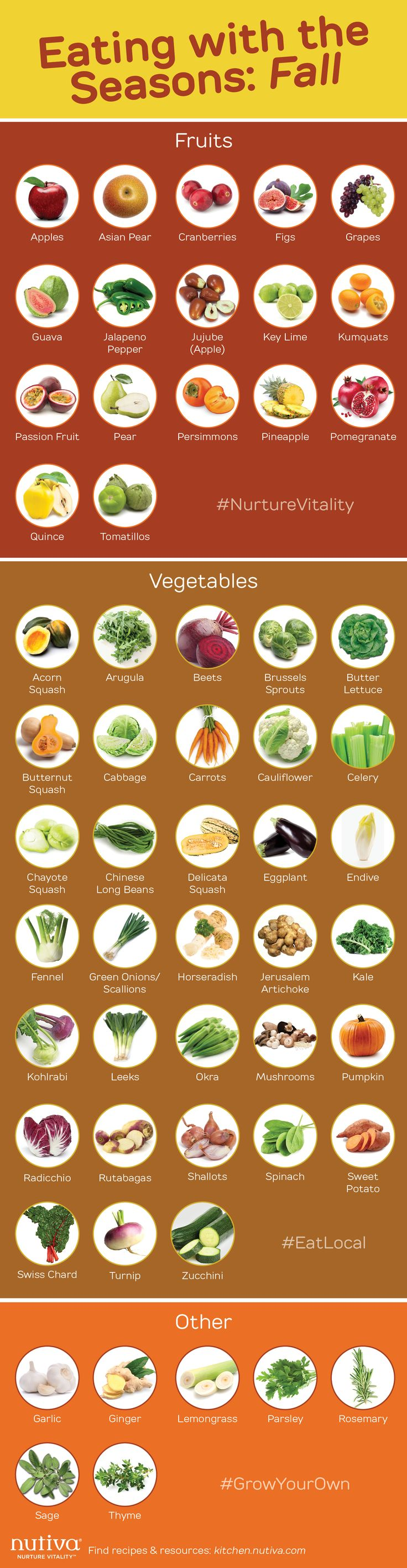 Eating with the Seasons Fall graphic Pinterest kitchen.nutiva.com Infographic