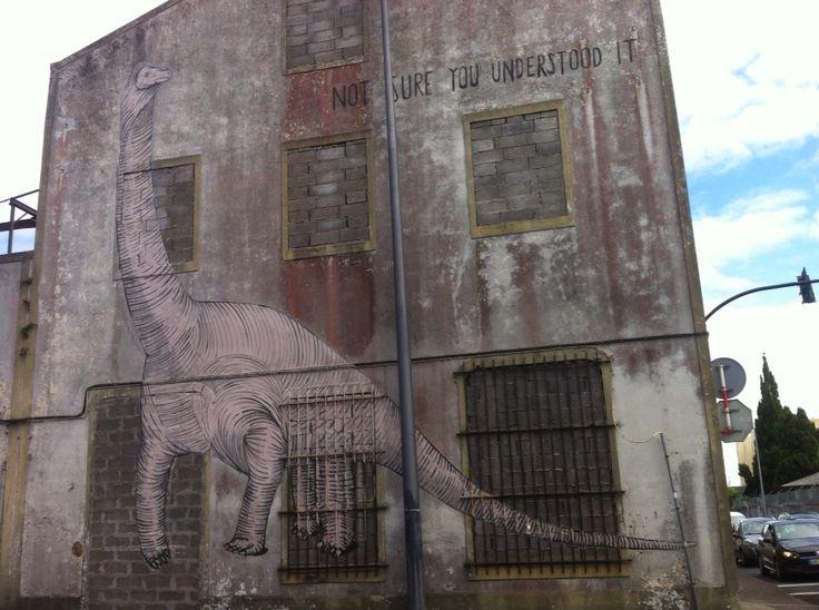 Not sure u understood it, Ponta Delgada Azores
