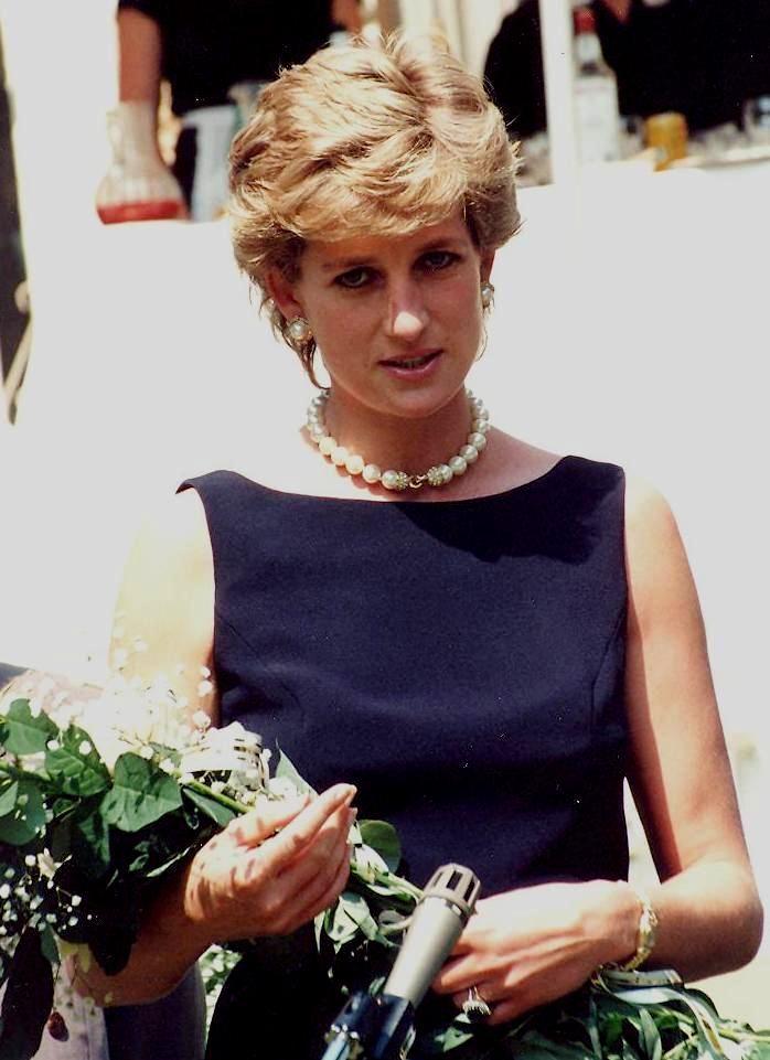 Pleasant Best 25 Princess Diana Wiki Ideas On Pinterest Lady Di Prince Short Hairstyles Gunalazisus