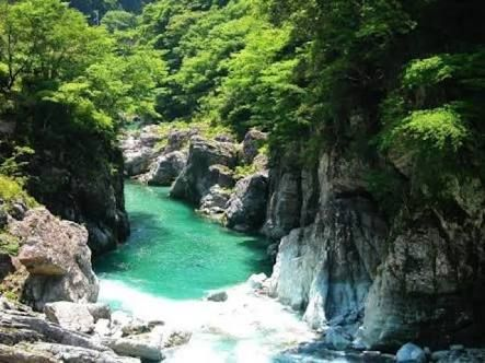 Omogo kei/ it is The Omogo River which located on the southern slope of Mt. Ishizuchi, the highest mountain in western Japan. It is the valley of the Omogo River source stream