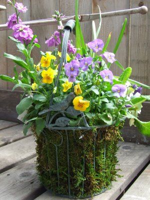 The 52 best spring container ideas images on pinterest container dig it childrens gardening resource spring containers with kids mightylinksfo