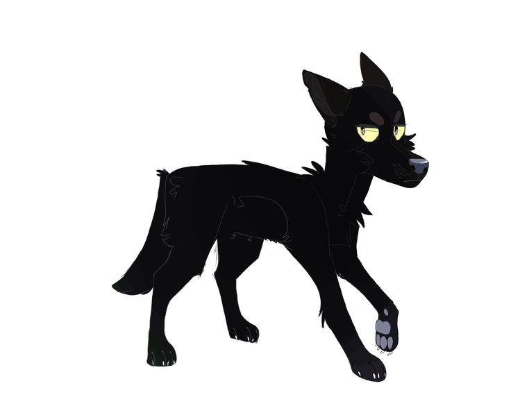 A melanistic coyote from a story i am currently writing