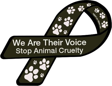 Animals are FAMILY. We are the voice. We must stand up for their rights and let them be heard. They should never be abused.