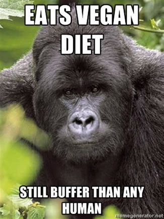 1000+ images about Vegan Quotes on Pinterest | Cow, Dot org and ...