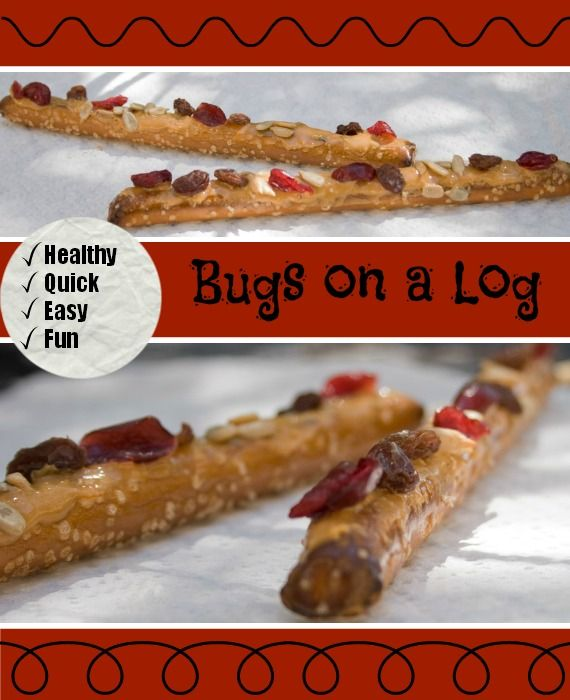 Bugs on a log. Cute and healthy after school snack kids can make themselves!