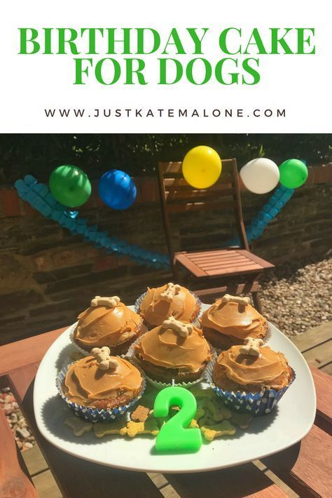Birthday Cake Recipe For Dogs For The Puppers Pinterest Dog