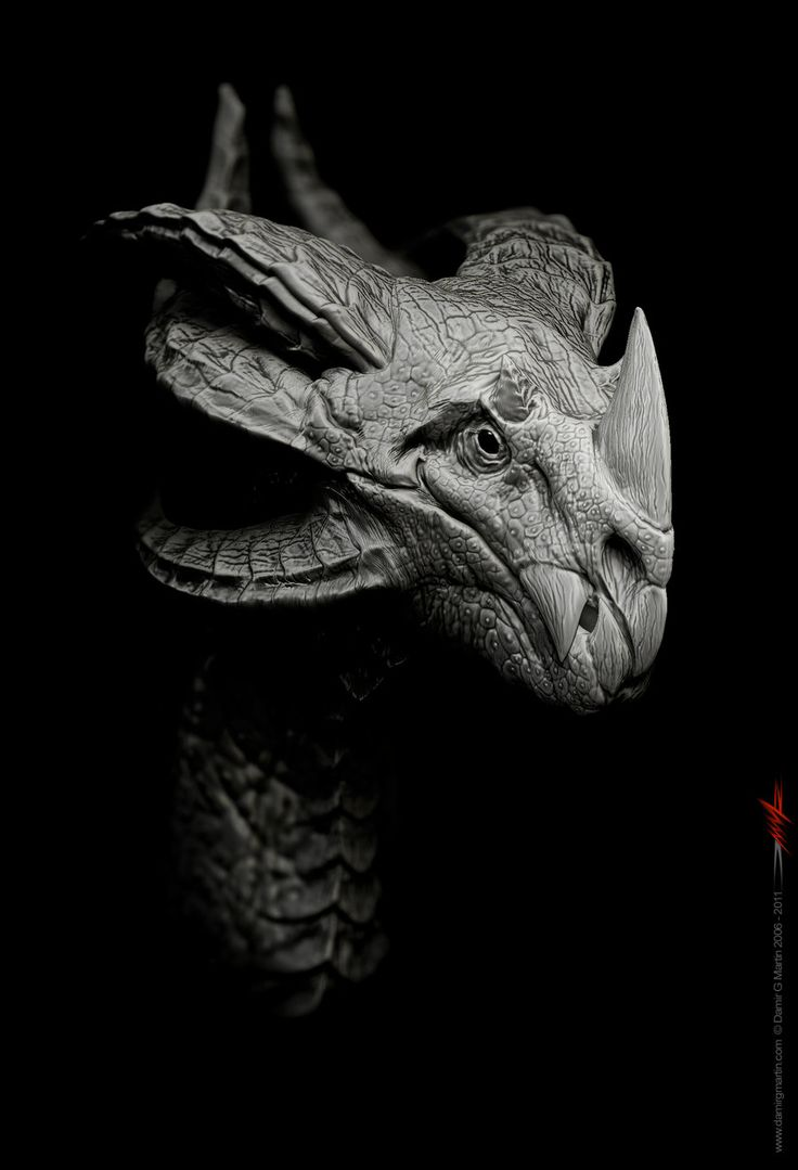 Dragon design 1 by damir-g-martin.deviantart.com on @deviantART