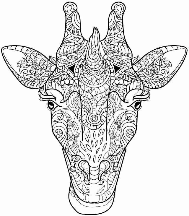 Animal Mandalas Coloring Pages Elegant Favorite Coloring Free Printable Coloring Pages For In 2020 Giraffe Coloring Pages Mandala Coloring Pages Animal Coloring Books