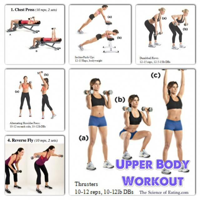 How To Tone My Upper Body Quickly Manual Guide