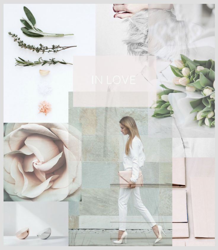 Modern, Clean, Beautiful Black White Nude Blush Taupe Pink Coral Chic Elegant Blog Style Flowers Plant Leaf Vogue Font