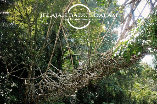 The Root Bridges of Baduy