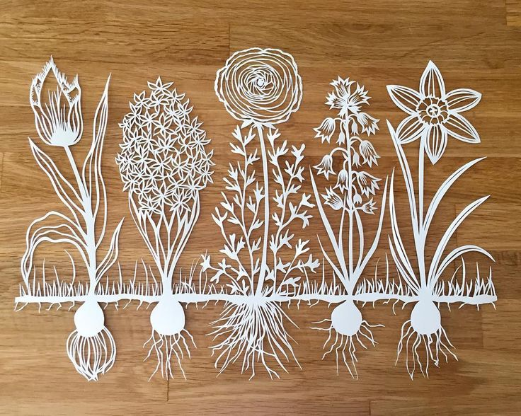 25 unique papercutting ideas on pinterest cut paper art for Beautiful paper cutting art