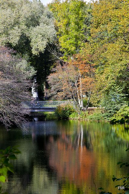 Berlin Tiergarten - Germany.  Received postcard July 2014 from Penpal in Germany showing this park - Beautiful!