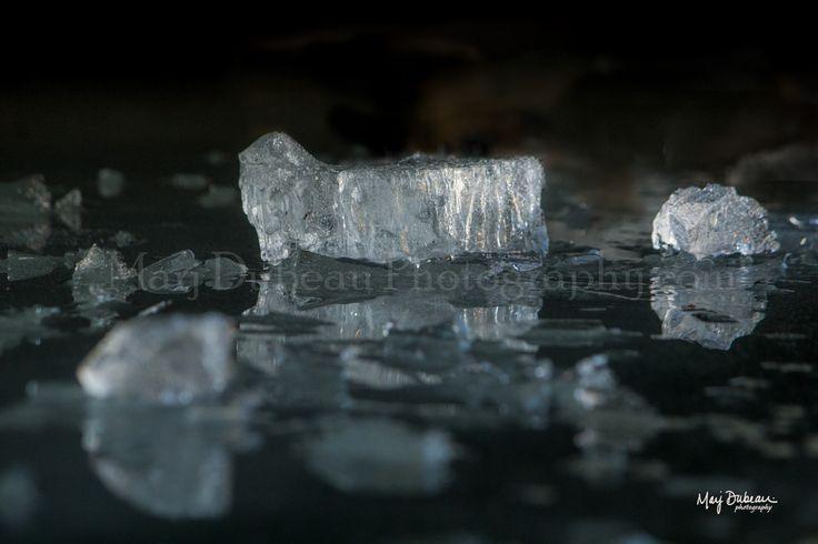 Nature's Diamonds – by Marj Dubeau Photography