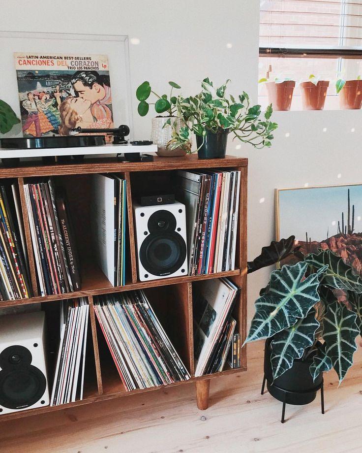 """super EMILY JANE LATHAN auf Instagram: """"Verdammt noch mal, unsere neue Vinyl-Speichereinheit wird immer beliebter! Finde meine pothos Stecklinge, die hübsch sitzen"""
