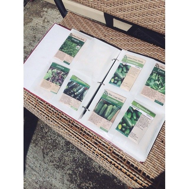 Gardening Tip: Organize your unplanted seeds in the sleeves of an old photo album. 🌿 #lifehack #gardeninghack #gardening @westcoastseeds